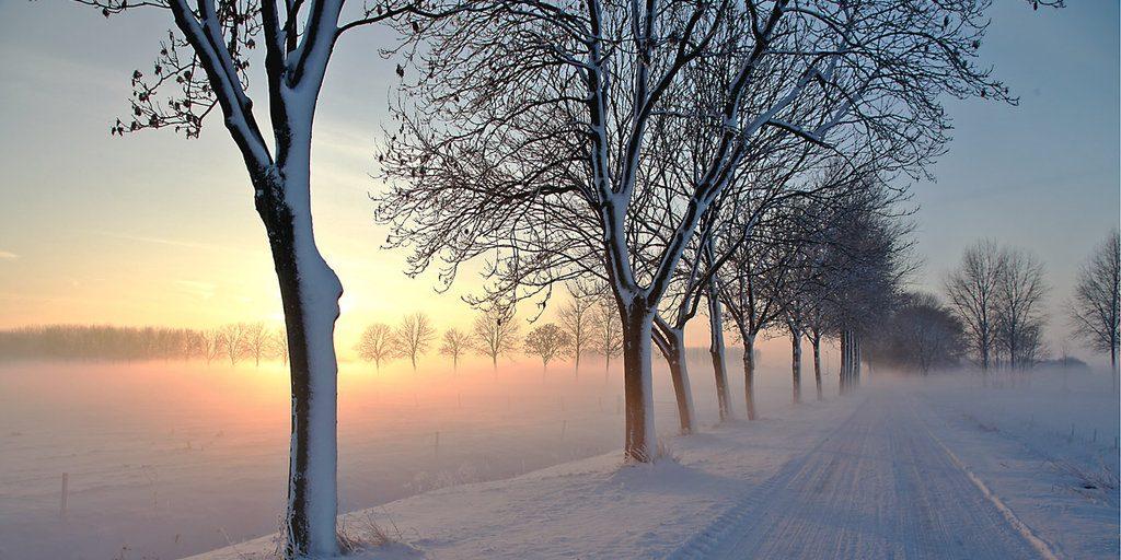 Voorkom de winterdip! Overleef de donkere dagen voor Kerst. 1